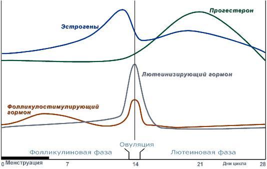 гормональные изменения