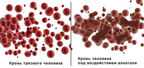 влияние алкоголая на кровь